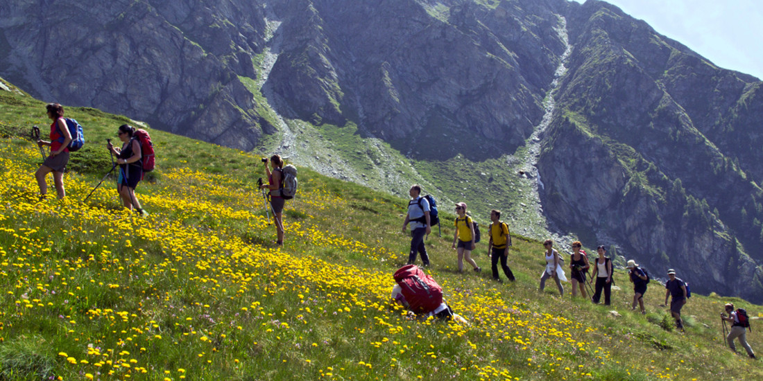 Val d'Aosta - Val d'Ayas, da Estoul verso la Bocchetta di Eclou: un gruppo del Cai Milano tra i fiori