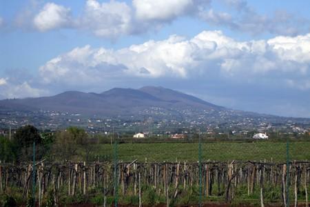 Monte Artemisio, colli Albani, Velletri, Lazio