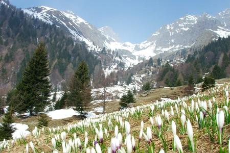 Valle d'Inferno, che da Ornica sale fino al Pizzo dei Tre Signori, Bergamo