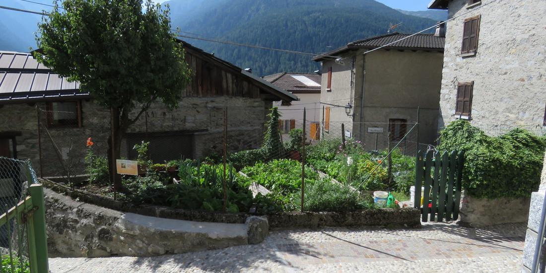 Premio Miglior Orto alpino, edizione 2015_Alba Menici, Parco dell'Adamello  - Comunità Montana Valle Camonica