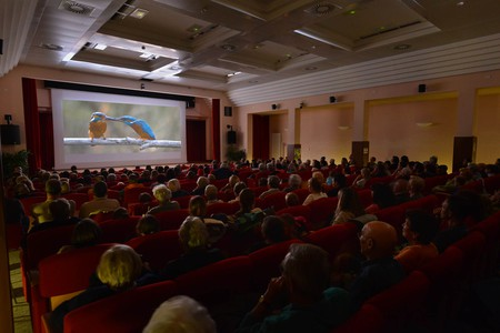 Proiezione di un film al Gran Paradiso Film Festival