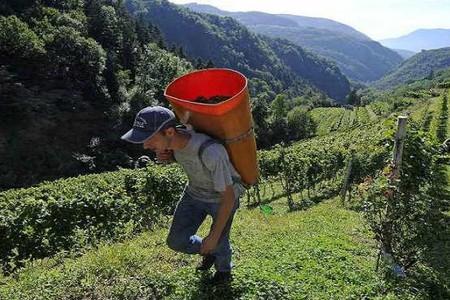 Cembrani agricoltura di montagna
