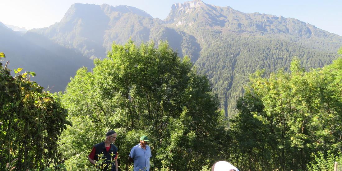 Premio Miglior Orto alpino, edizione 2015_Rachele Gaudiosi, Parco dell'Adamello  - Comunità Montana Valle Camonica