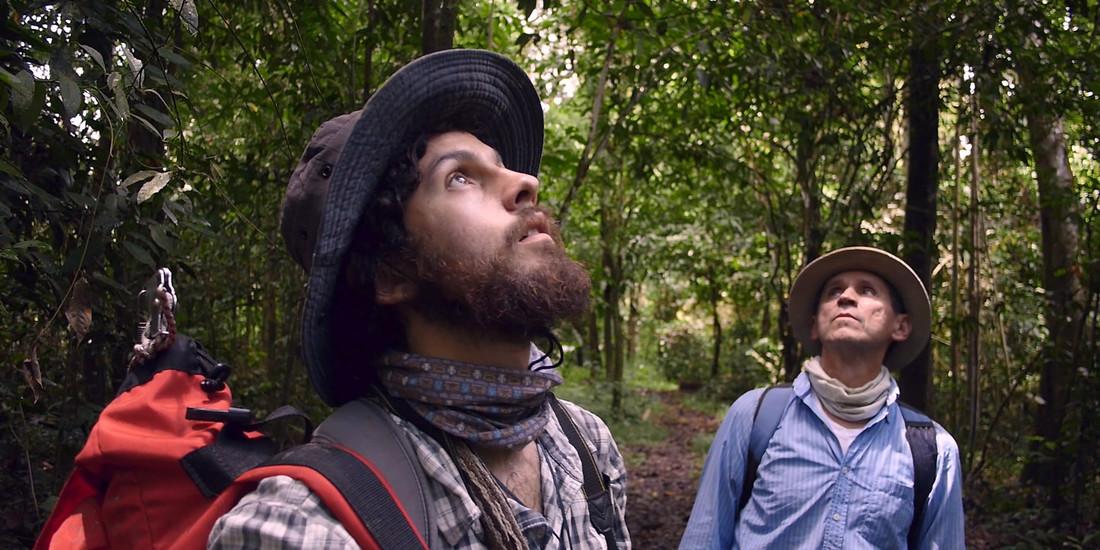 HOMO BOTANICUS @FILMFESTIVALDELLALESSINIA