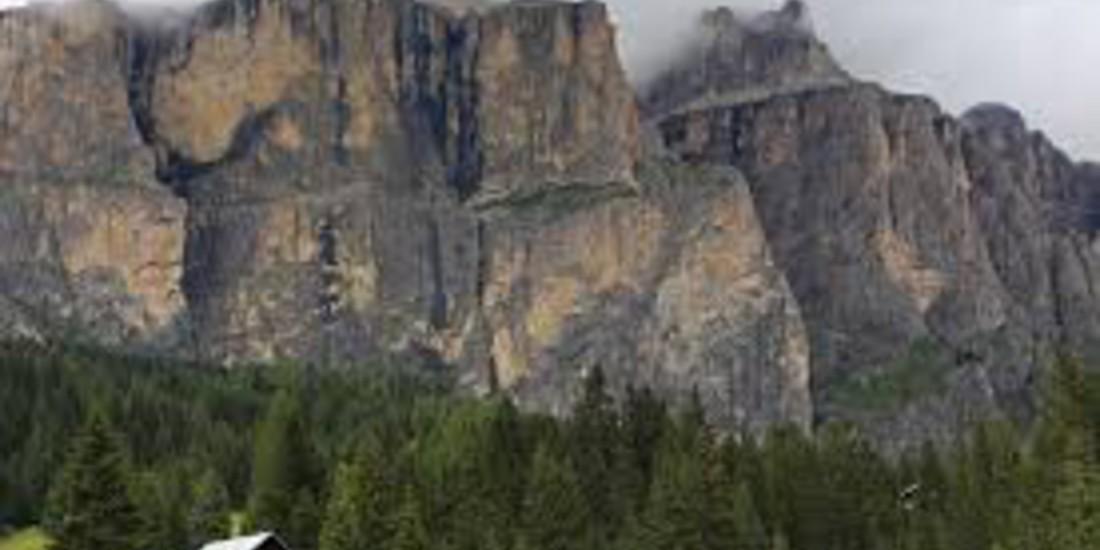 Foreste di conifere e foreste miste delle Alpi. Fonte Wikipedia