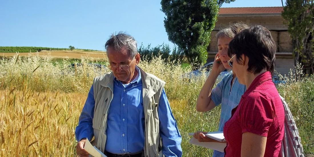 Momento di confronto in campo tra ricercatori, ph. Paola Migliorini