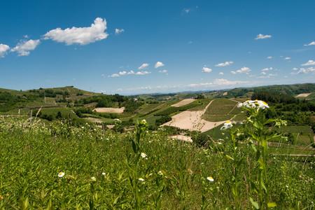 Colline del Roero, Piemonte