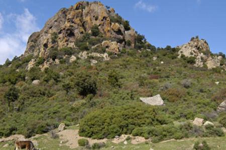 Perdasdefogu, paesaggio dell'Ogliastra
